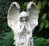 День Ангела: Таисия, Аглаида, Аполлинария, Василий, Василиса, Дарья, Исаакий, Сергей