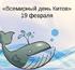 Всемирный день защиты морских млекопитающих (День кита)